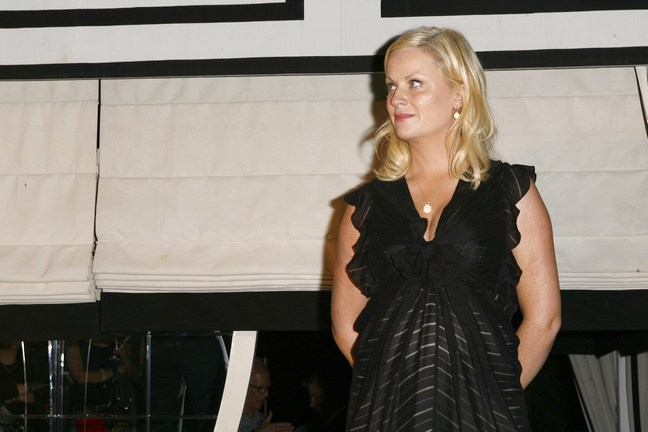 Amy Poehler, black dress, necklace, earrings