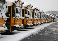 5 Tips For Surviving Snow Days
