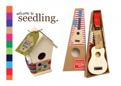 Seedling Kits for Kids