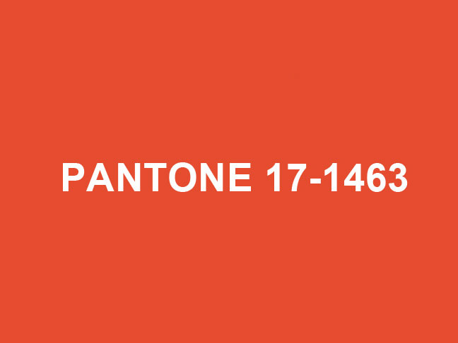 Pantone Color Of The Year 2012 a fresh start: pantone color of the year 2012
