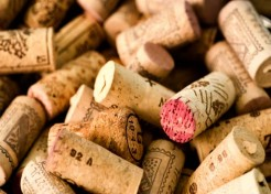2009 Matchbook Tempranillo Review