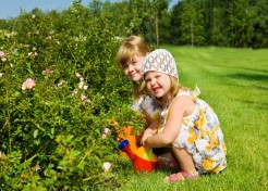 Fun Gardening Tips For Little Ones