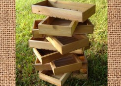 Garden Seed Trays for Father's Day