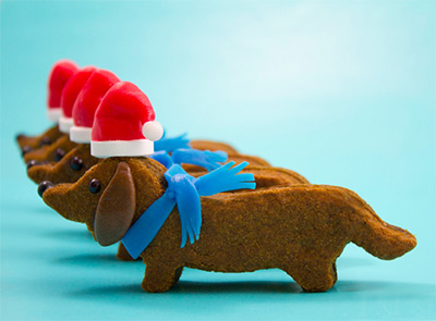 Christmas Cookies - Dog Cookies