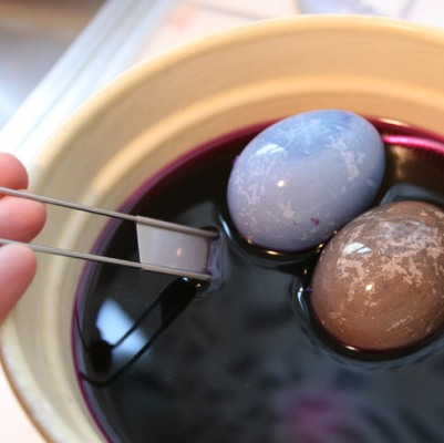Naturally Dyed aster Eggs