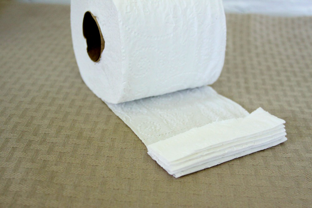 Toilet Paper Origami Fan Craft - Step 2