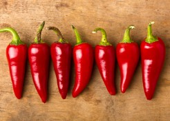 How to Grow Chili Plants Indoors