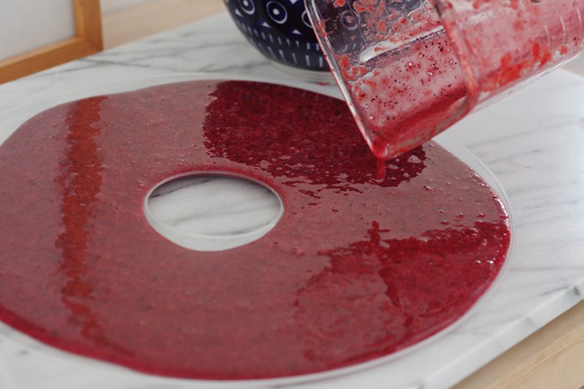 Diy Healthy Fruit Roll Ups For Kids And Happy Moms