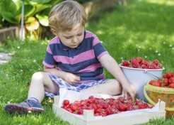 7 Secrets to Getting Your Kids to Eat More Fruits & Veggies