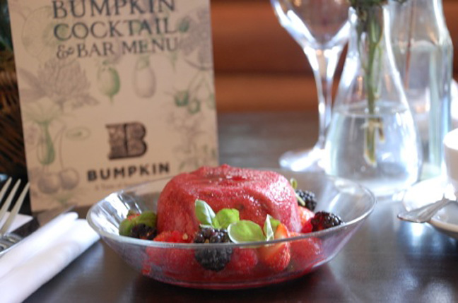 bumpkin-summer-pudding-recipe-12