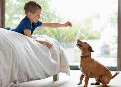 5 Ways My Son Helped Train Our Puppy