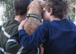 5 Ways My Kids are Just Like My Dog