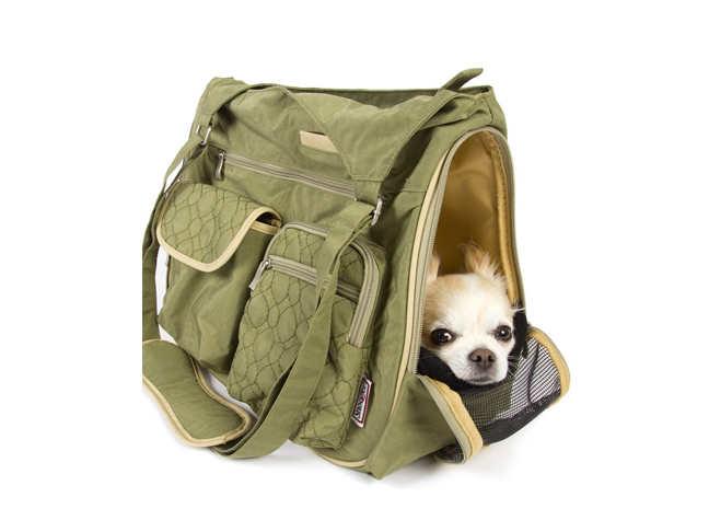 Best Pet Carriers Amp Beds For Your Dog