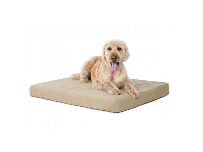 memory_foam_bed_for_dogs