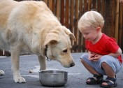 9 Dog Safety Lessons to Teach Your Kids (Especially If You Don't Have One in the House)