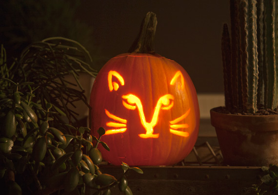 kitty-face-pumpkin