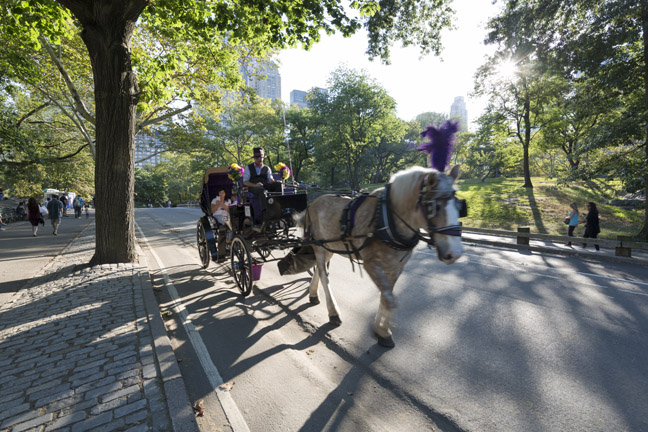 what-to-do-in-new-york-nyc-with-kids-15