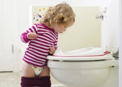Potty Trained in 4 Days: The 6 Toilet Training Essentials We Used
