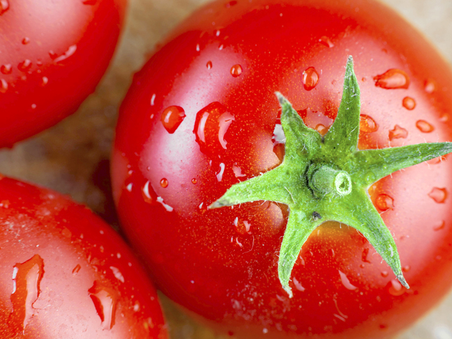 tomatoes-up-close
