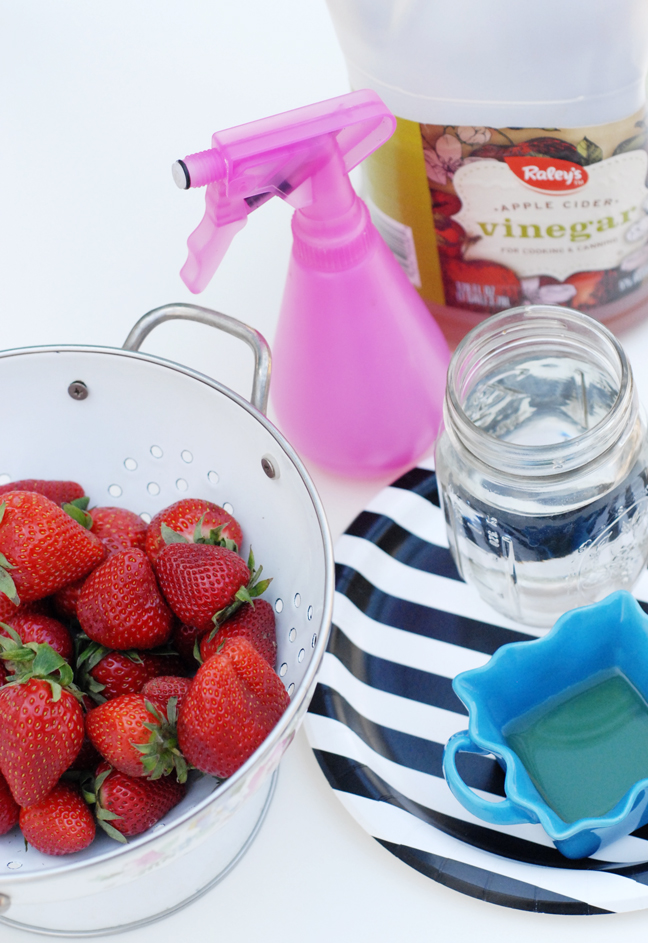 strawberries pink spray bottle mason jar