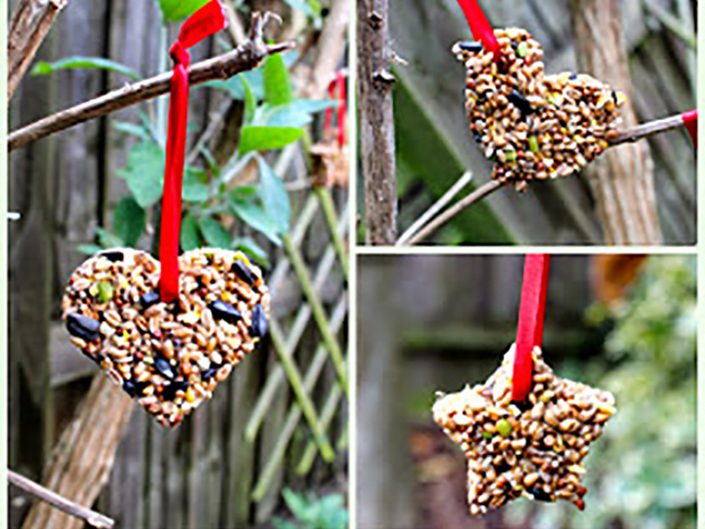 bird seed shapes red ribbon