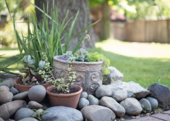 How to Use Your Backyard to Meet New Families This Summer