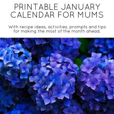 January calendar for mums