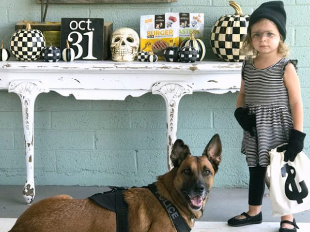 10 Adorable Matching Dog and Kid Halloween Costumes