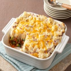 Cheesy casserole for 101 soup cuisine