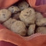Make Pumpkin Spiced Chocolate Chip Cookies