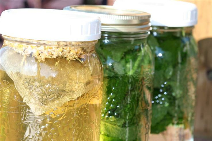 Make Some Homemade Sun Tea