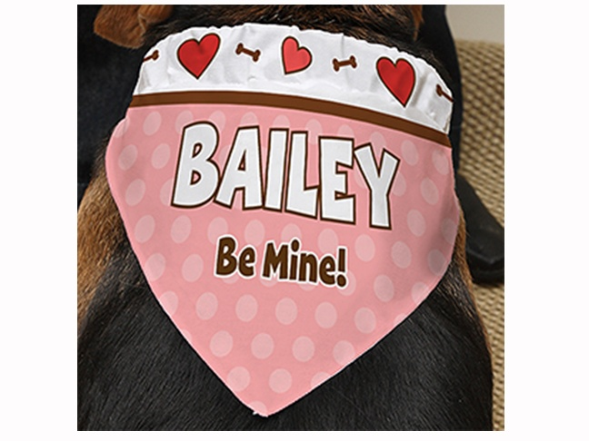 Valentines Day Gift Ideas for Your Dog